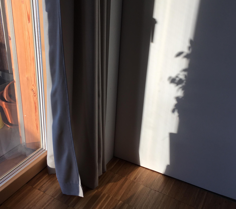 Zauberhafte Schatten