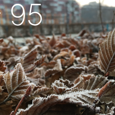 Tag 95 – Egal