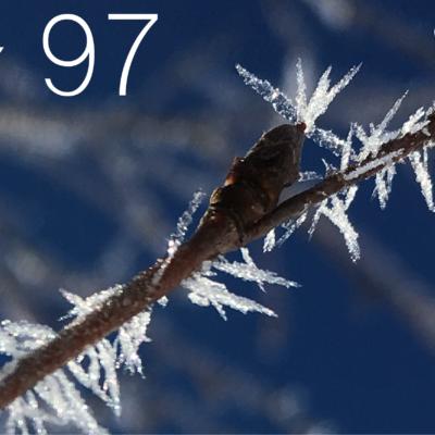 Tag 97 – Winterzauber