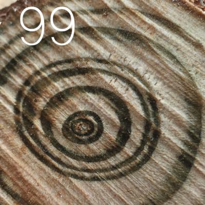 Tag 99 – Tanz des Lebens